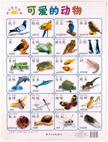 Chinese Vocabulary Basics Posters | Chinese Books | Learn Chinese ...