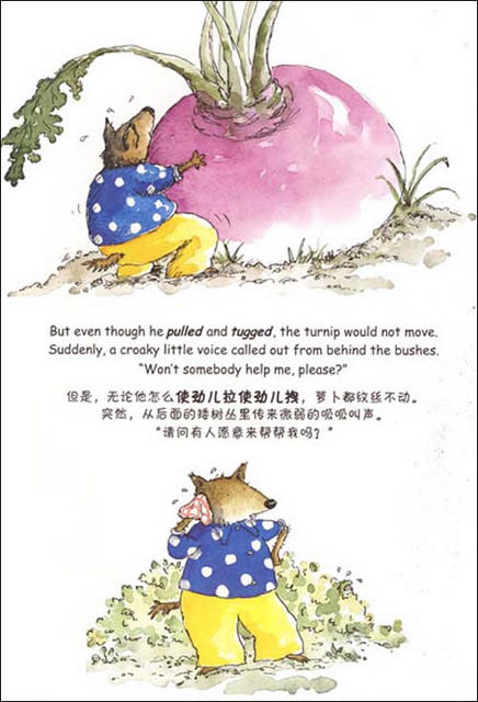 Mr Wolf And The Enormous Turnip Chinese Books