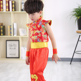 19dc1e4acf Kids Dance and Kungfu Costume